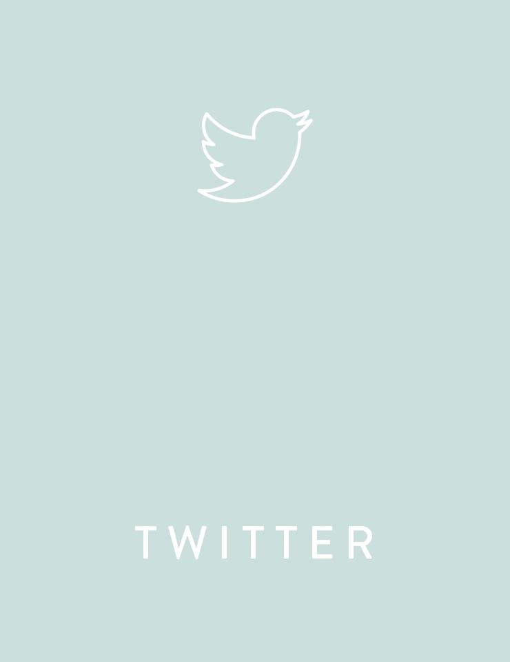 ewl_grid_twitter